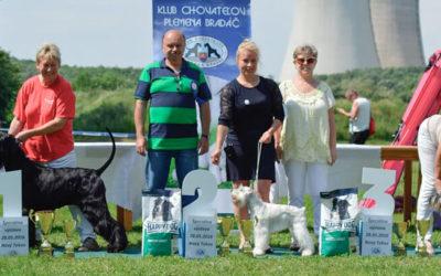 Výsledky ŠV Nový Tekov, 28.5.2016